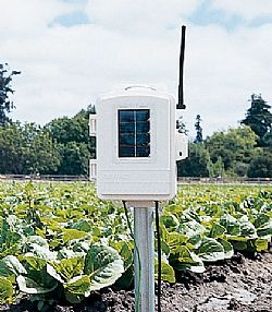 Complete Wireless Soil Moisture/Temperature Station 6345cs